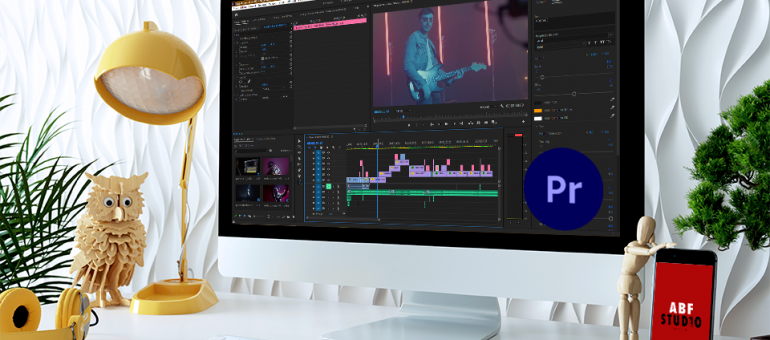 Aperçu Premiere Pro